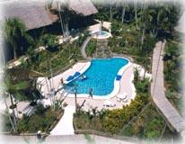 Ceiba Tops