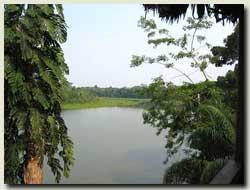 Boca Manu/Manu wildlife Tented camps at park