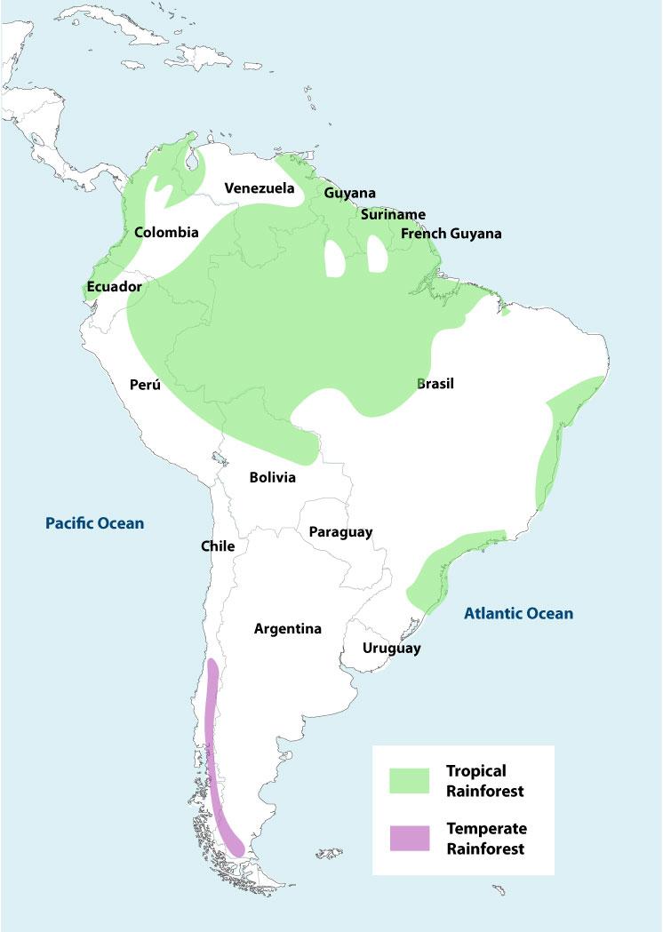 Picture of: Amazon Rainforest Map Peru Explorer